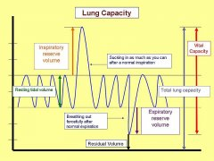 Vital capacity and the difference Between FVC & VC